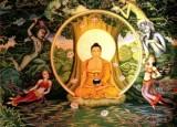 Il sentiero di Siddharta