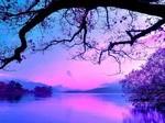 purple-sunset-wallpaper-9