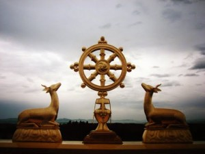 ruota-del-dharma-sofferenza