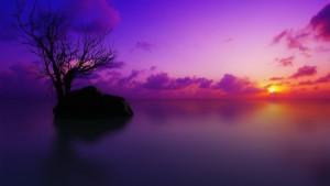 sunset-wallpaper-background-1920x1080-copia