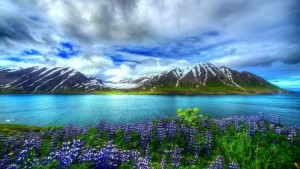 nature_beautiful_hd-wallpaper-mountain_lake_flowers_sky-1920x1080