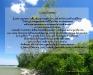 sfondo-desktop1-5