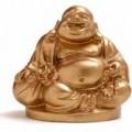 Buddha-presa-di-rifugio