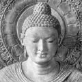 buddha-4-nobili-verita