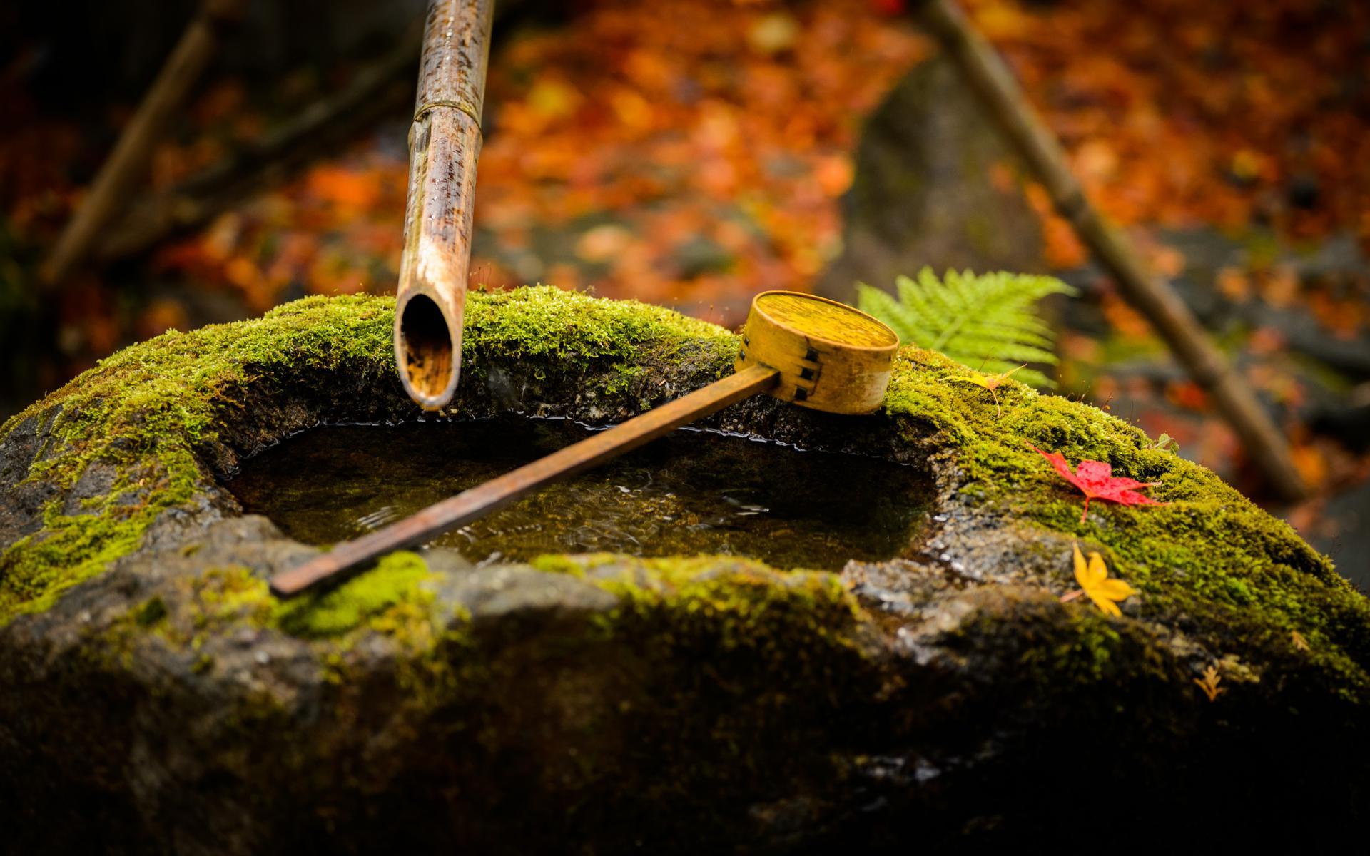 Zen Home Sfondi Desktop Zen