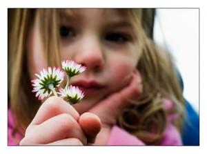 fiore-buddha